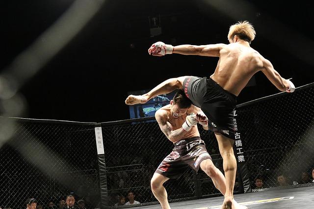 bojové umění