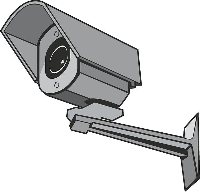 kamerovysystem